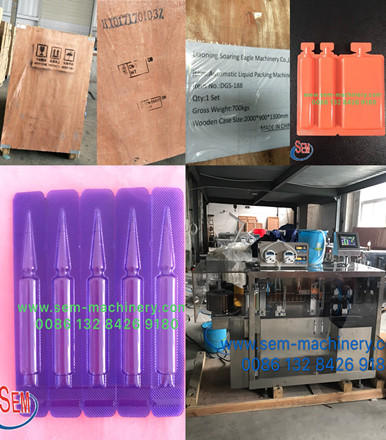 Automatic BFS Liquid Packing Machine Delivery