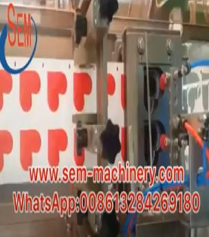 Automatic Heart Shape Sachet packing machine